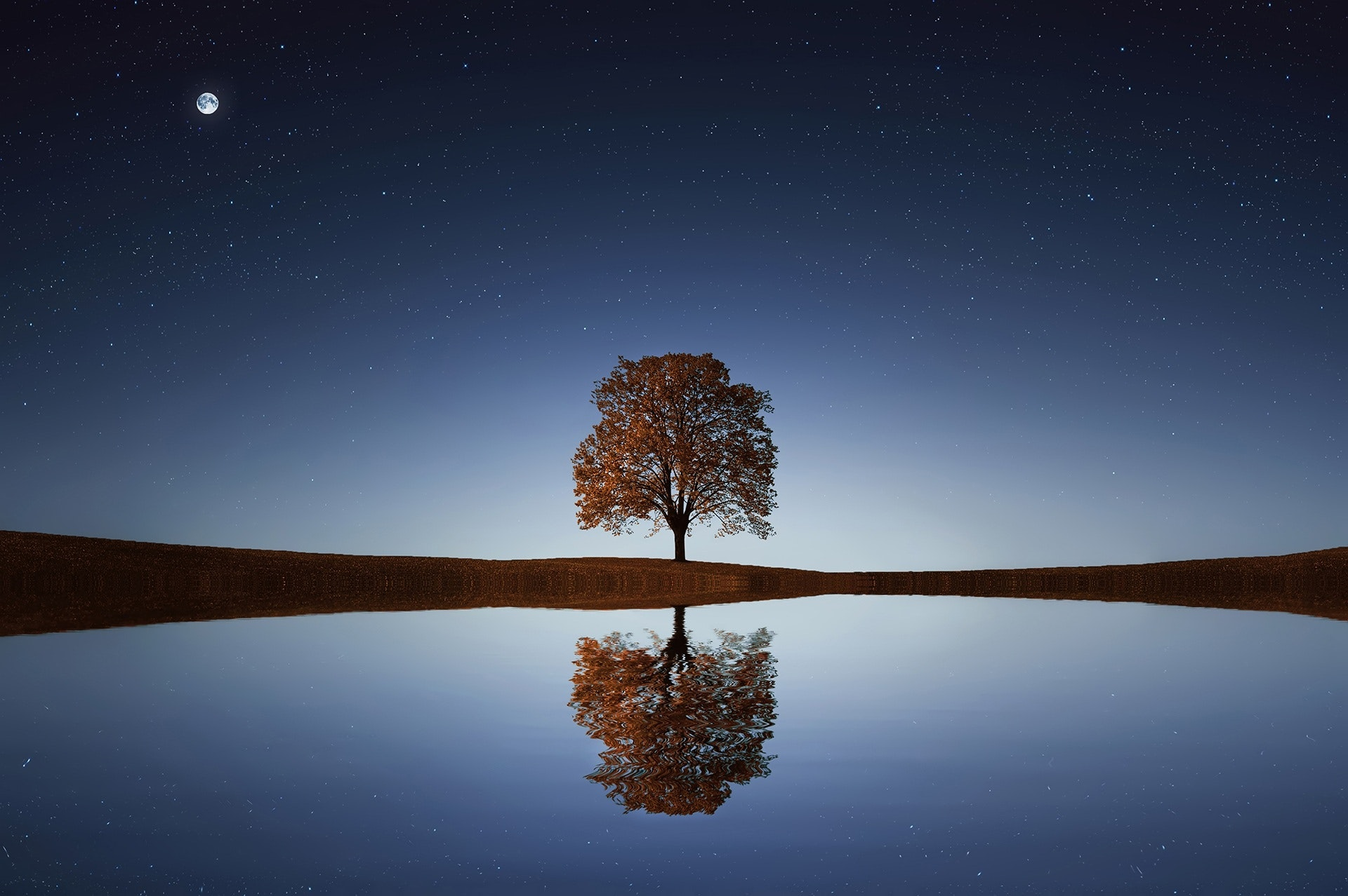 tree reflections tips for beach photography